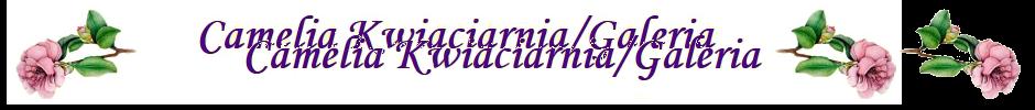 Camelia Kwiaciarnia/Galeria